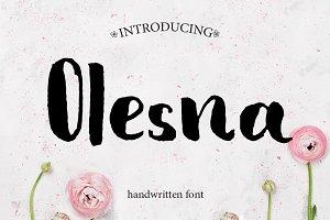 Olesna - Sans Serif Font
