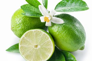 lime fruits on the white