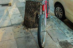 Vintage Bike Detail