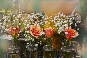 Roses with Baby's Breath in Bottles