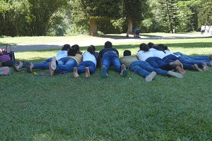Group of unrecognizable indian young people lying on green grass at the park and photographing. Rear back view
