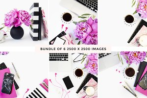 Hot Pink + Black Desktop Bundle