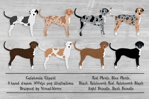 Catahoula Leopard Dog Illustration