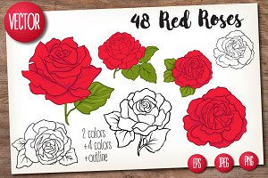 48 Red Roses Set