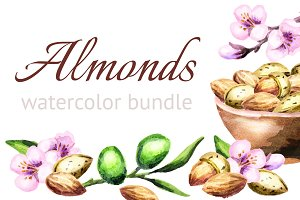 Almonds bundle. Watercolor
