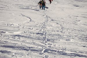 Group of skiers walking in snow alps with ski