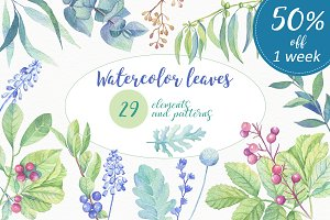 Watercolor leaves, berries, flowers