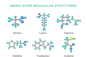 Molecular structures set