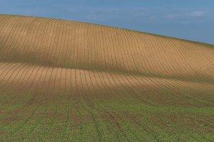 South Moravia landscape and farmland
