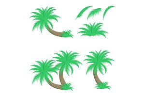 Set of palm trees and leafs