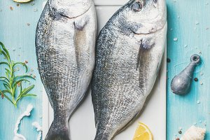 Fresh Sea bream uncooked fish