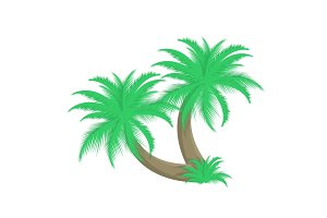 Two palm trees vector illustration