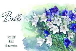 SALE! Watercolor campanula bell