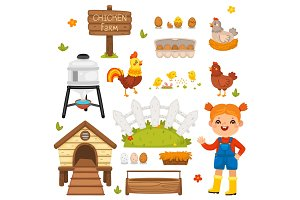 Cartoon Chicken Farm Isolated Illustrations Set