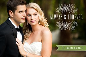 Wedding Photo Overlay Text PNG