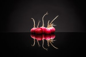 Fresh small red radishes
