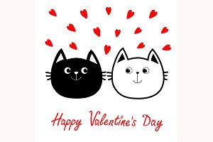 Black White Cat. Valentines day