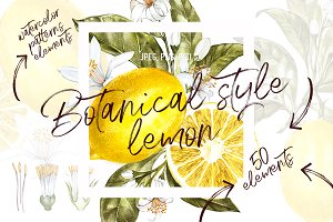 Lemon in botanical style