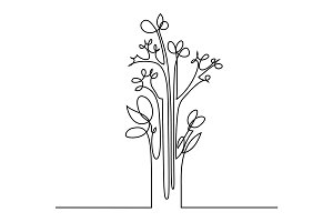 Continuous line drawing of flowers