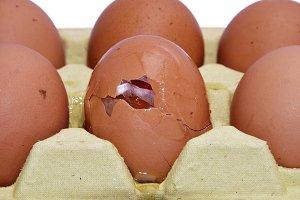 Broken egg detail