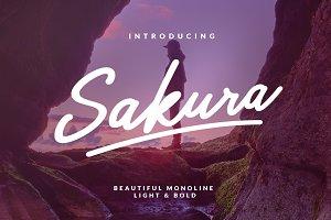 Sakura Font Family 25% OFF