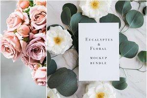 Eucalyptus Floral Mockup Bundle