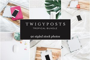 MASSIVE Tropical Stock Photo Bundle