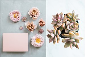 Mauve Pink Styled Stock Mockup