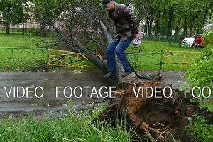 Hurricane-people jump over a fallen tree