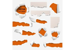 Collection of torn edges of a hole paper vector illustration.