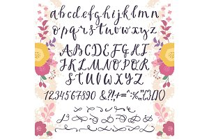 Calligraphic vector font with numbers ampersand and symbols flower hand drawn alphabet lettering
