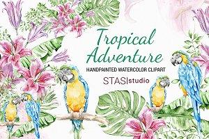 Summer Watercolor Clipart Parrot