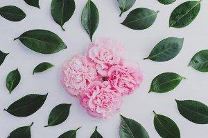 Pink flowers  & green leaves pattern