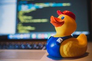 Developer duck