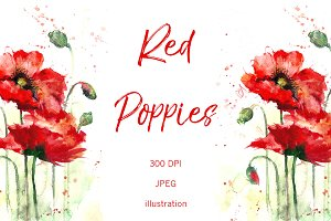 SALE! Watercolor red poppies