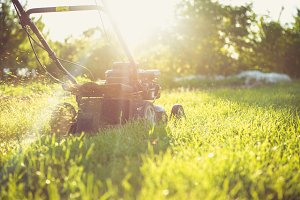 Mower against the sun
