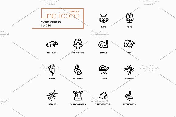 Pet Types Line Pictograms Set
