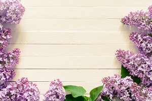 Vintage background with lilacs