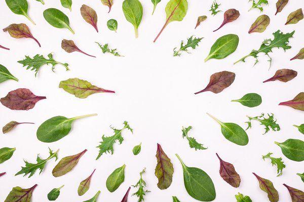 Salad leaves. Flat lay