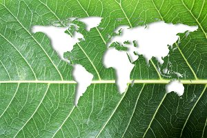 Ecology and Think green concept
