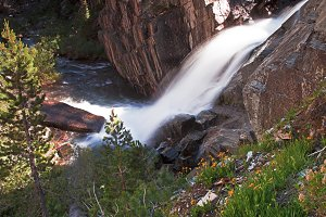 Ansel Adams Wilderness Scene