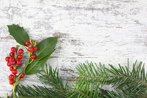 Christmas plants in a wood backgroun