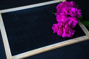 Peonies and chalkboard