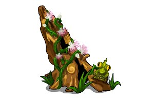 Stump covered with plants and toad