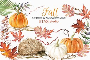 Watercolor Pumpkin Hedgehog Clipart