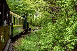 Sightseeing Train in Miskolc