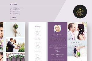 AVANDA Photography Trifold Brochure