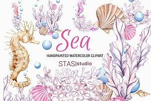 Ocean Watercolor Clipart Seahorse