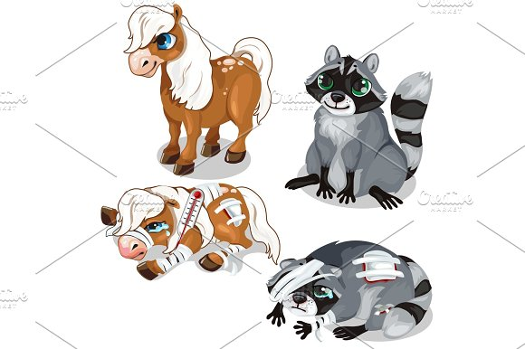 Horse And Raccoon In A Healthy And Sick State
