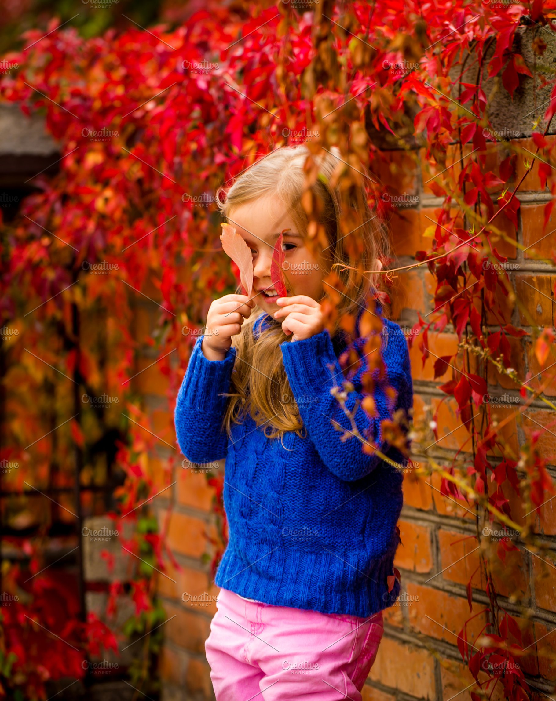 563843151265 little girl on a beautiful background of autumn wild grapes ~ Photos ...